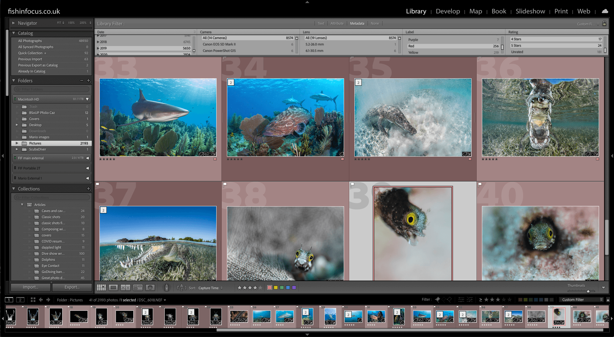 scuba Travel, Lightroom Catalogue